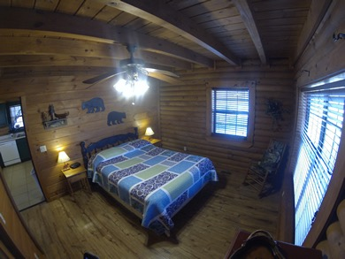 Bear Necessities - Master Dale Hollow Lake